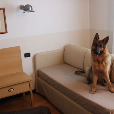 pet-friendly hotel schio animali ammessi 01