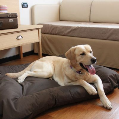 pet-friendly hotel schio animali ammessi 11