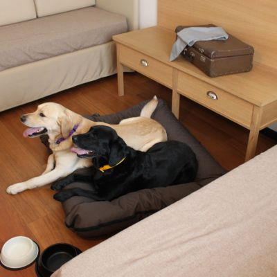 pet-friendly hotel schio animali ammessi 15